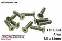 Screws - Flat Head - Hex (Allen) - M3 x 12mm (10 pcs)